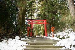 Japan Day Three - 01.22.16 (dunksrnice) Tags: japan jr rolo 2016 tanedo dunksrnice wwwdunksrnicenet rolotanedo rolotanedojr rtanedojr japan2016