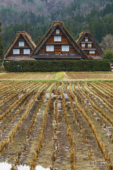 Shirakawa-go three houses (NettyA) Tags: travel houses roof winter house reflection water field japan asia village thatch unescoworldheritage shirakawago shirakawa gassho 2015 gasshostyle ogimachi gifuprefecture onodistrict