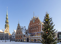 Riga (HybridDave) Tags: christmas city travel snow cold beautiful composition square photography nikon europe exposure photographer culture christmastree baltic latvia townhall riga rix blackheads hybriddave