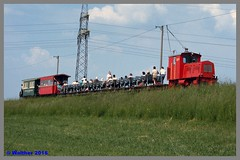 IRR1_89_0038aa (r_walther) Tags: sterreich trolley rhein aut hchst elektrisch vorarlberg schmalspur stromabnehmer 750v irr 760mm transportbahn rheinbhnle internationalerheinregulierung lokelfi