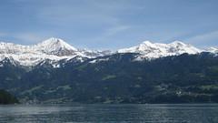 Morgenberghorn - First- Latrejespitz - Dreispitz über dem Thunersee in den Alpen - Alps im Berner Oberland im Kanton Bern der Schweiz (chrchr_75) Tags: hurni070530 christoph hurni schweiz suisse switzerland svizzera suissa swiss kantonbern berner oberland berneroberland chrchr chrchr75 chrigu chriguhurni chriguhurnibluemailch mai 2007 kanton bern thunersee alpensee see lake lac sø järvi lago 湖 albumthunersee