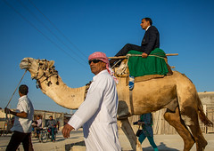 groom riding a camel during his wedding ceremony, Qeshm Island, Salakh, Iran (Eric Lafforgue) Tags: wedding people men animal horizontal outdoors groom asia ride iran muslim islam traditional ceremony culture traditions marriage persia folklore dromedary celebration riding camel arab custom groupofpeople adultsonly middleeastern herbivore persiangulf herder qeshmisland menonly hormozgan  bandari  5people  iro straitofhormuz  colourpicture  salakh irandsc03070
