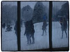 come out play (virtually light - winterland) Tags: park winter people window glass monochrome gardens snowmen botanic