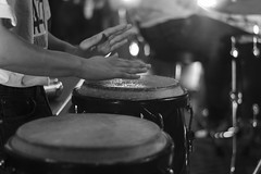 Bongos (Projectstokes01) Tags: lighting street city school light bw music woman white man black guy mike girl night trash canon frank asian mexico photography 50mm star high san francisco camino bass guitar jonathan song buttons stage south hannah chinese performance piano trumpet jazz sigma el can double spotlight bin mexican saxaphone musical button horror and trombone wars perform practice latina f18 recycle beanie 18200 songs bautista ariana sinatra 1100d yongnuo galisatus
