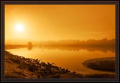 Charleston, OR - Marina (Rick-Willis) Tags: usa horizontal oregon gold golden adobelightroom totalphoto ononesoftware