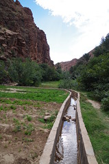 imgp5229 (Mr. Pi) Tags: mountains oasis morocco agriculture waterworks irrigation highatlas