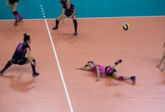 P2202580 (roel.ubels) Tags: sport flamingos setup volleyball finale 56 volleybal almere beker halve topsport topsportcentrum sprindendaal