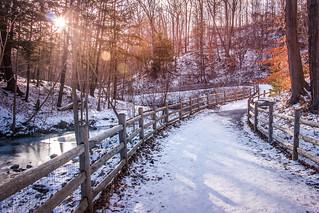 Winter has Arrived @ Sunnybrook Park
