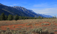 Looking Up East Face of Grand Teton Range - Grand Teton National Park, Wyoming (danjdavis) Tags: mountains nationalpark rockymountains wyoming grandtetons grandtetonnationalpark grandtetonrange