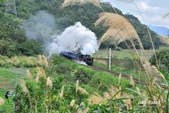 DAO-73865 (Chen Liang Dao  hyperphoto) Tags: taiwan
