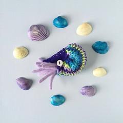 Nautilus Brooch (hine) Tags: toy pin handmade brooch knit craft felt etsy nautilus seacreature hine
