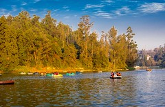 Ooty Lake (gupta_rajat7) Tags: india lake ooty