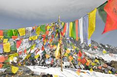 DSC_4896 (jdcruzba) Tags: nepal nikon sigma abc annapurna annapurnabasecamp d5100