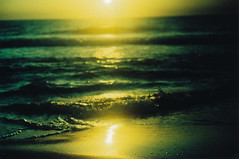 Keeping to the present (Kelly Marciano) Tags: ocean light sunset sea reflection green film beach gulfofmexico water yellow analog 35mm evening xpro crossprocessed sand waves dusk slidefilm depthoffield naples dreamy tungsten analogue canona1 fujichrome vignette filmgrain fromthearchives 64iso fujichrometungsten64ttypeii bluemoonprint winterabort