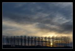 CHOPERA Y SOL II  [ Explore] (Juan J. Marqués) Tags: cielo nubes puestasdesol nwn azules chopos