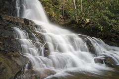 IMGPE19134_Fk - Great Smoky Mountain National Park - Laurel Falls (David L. Black) Tags: us unitedstates tennessee waterfalls sevierville greatsmokymountainsnationalpark