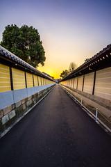 Temple Walls (ErikFromCanada) Tags: sunset sun tree japan temple japanese evening kyoto path walls setting sunsetting a7r