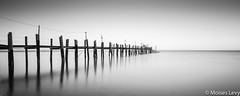 China Camp Pano-2.jpg (falandscapes) Tags: longexposure bw blancoynegro water horizontal pier blackwhite bn panoramica panoramicas portatil levy chinacamp exportados moiseslevy