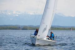 _DSF3926 (Frank Reger) Tags: regatta u20 dsc segeln segelboot diessen