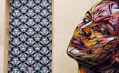 Lyon - Graff d'Alexandre Hopare Monteiro. (Gilles Daligand) Tags: portrait streetart art collage graffiti lyon rue mur artiste rhone papierpeint alexandrehoparemonteiro
