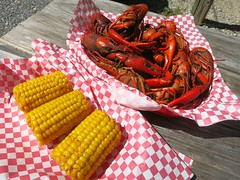 IMG_2309 (David Danzig) Tags: food mississippi spring corn break shed crawfish blues bbq april joint the 2016