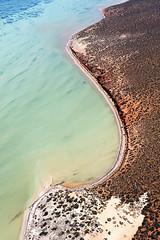 Shark Bay - 5470