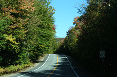60 (ETt_) Tags: road blue autumn trees light red sky sun green yellow forest shadows contraste campaign 60