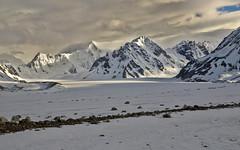 A Little Light (Lee Petersen) Tags: light mountains alaska clouds peak overcast moraine alaskarange blackrapidsglacier