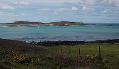 IMG_6584 (Chris Wood 1954) Tags: tresco islesofscilly
