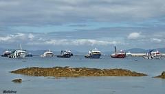 Flota pesqueira (lourdestorreira) Tags: mar barcos pueblo paisaje galicia barcas pesca marinero flota