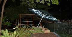 IMG_7779 (jalexartis) Tags: lighting nightphotography sun night dark outdoors aquarium outdoor aquatic basking aquatichabitat ybst yellowbelliedsliderturtles outdoorhabitat