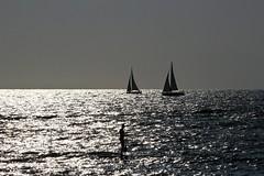 sailing & paddling - Hertzelia beach (Lior. L) Tags: sea beach sailing surfer silhouettes sailboats paddling sup hertzelia sailingpaddlinghertzeliabeach