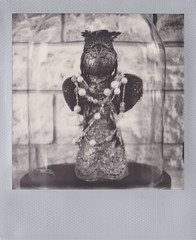decorao (polaroid.nawan) Tags: film dutch vintage polaroid photo decoration instant ip bwsx70 impossibleproject