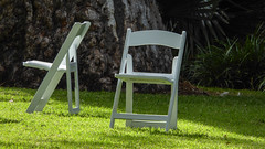 After the Wedding (Theen ...) Tags: trees wedding party white green weather lumix wooden day chairs fine lawn large parties sunny shade adelaide bridal folding botanicgardens theen