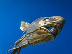 Fish Art (E. Hanson) Tags: art mexico permit flyfishing scupture yukatan puntaallen ascensionbay