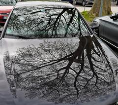 Lichtspiele 2016-006_Web (berni.radke) Tags: reflection essen illusion mirage reflexion spiegelung spiegelbild zollverein spiegelungen lichtspiele trugbild