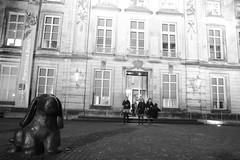Leaving a great exhibition (RW-V) Tags: blackandwhite bw monochrome museum noiretblanc nederland thenetherlands nb sw denbosch paysbas niederlande shertogenbosch hieronymusbosch noordbrabant zw canonefs1755mmf28isusm boisleduc jheronimusbosch herzogenbusch canoneos60d dwwg hetnoordbrabantsmuseum