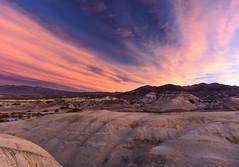 Sunrise, Texas Spring Campground, Death Valley_ (Basak Prince Photography) Tags: flowers camping sunrise landscape spring desert bloom deathvalley badlands deathvalleynationalpark weatherandseasons landscapephotogarphy texasspringcampsite
