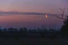Morning Moon (runovv) Tags: longexposure light sunset sky nature night clouds sunrise dark skyscape stars landscape lights spring darkness russia outdoor space suburb saintpetersburg cosmos starlight