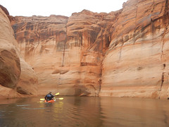 hidden-canyon-kayak-lake-powell-page-arizona-southwest-DSCN4948 (lakepowellhiddencanyonkayak) Tags: arizona southwest utah kayak kayaking page coloradoriver paddling nationalmonument lakepowell slotcanyon glencanyon watersport glencanyonnationalrecreationarea recreationarea guidedtour hiddencanyon utahhiking arizonahiking kayakingtour halfdaytrip craiglittle lakepowellkayak lonerockcanyon kayakinglakepowell hiddencanyonkayak seakayakingtour seakayakinglakepowell arizonakayaking utahkayaking