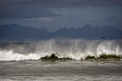The Wave IV (hassner) Tags: sea beach weather southafrica wind wave spray westerncape