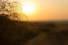 dusty road africa (felipeepu) Tags: africa road dusty sunrise jeep south safari dust sonnenaufgang südafrika