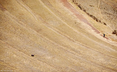 Psac (oeyvind) Tags: peru cuzco per per sacredvalley pisac vallesagradodelosincas urubambavalley psac xf50140mm