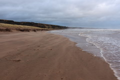 Shifting Sands,Sands of St Cyrus,St Cyrus National Nature Reserve_jan 16_676 (Alan Longmuir.) Tags: aberdeenshire grampian blowingsand stcyrus shiftingsands sandsofstcyrus stcyrusnationalnaturereserve
