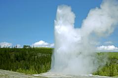 Old Faithful, 2 of 2 (F.emme) Tags: trees sky green nationalpark oldfaithful steam yellowstonenationalpark geyser hotsprings
