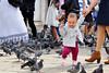 __DSC_2243 (erinakirsch) Tags: city travel venice sea people italy bird walking italia feeding pigeon pigeons crowd tourists explore feedingthebirds crowds peoplewatching veneto veniceitaly