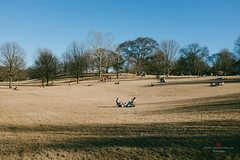 A 65 Degree Winter Day (nickmickolas) Tags: ga wm piedmontpark 2015