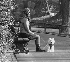 Le bichon - The bichon (p.franche) Tags: brussels urban blackandwhite woman dog chien blanco girl monochrome bench europe belgium belgique noiretblanc femme negro snapshot bruxelles panasonic dxo bichon brussel zwart wit fille hdr banc schaarbeek schaerbeek  instantan belge schwarzweis mustavalkoinen inbiancoenero svartochvitt parcjosaphat josaphatpark  bestofbw fz200  pascalfranche pfranche skancheli   littledoglaughednoiret