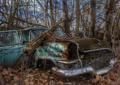 DSC08551.ARW-01 (juice95m3) Tags: abandoned rust vintagecar automobile junkyard oldcars classiccars