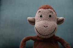 Lil Monkey (Neyol) Tags: blue portrait brown stuffedtoy toy monkey stuffed dof
